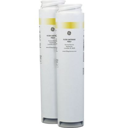 Picture of DUAL DRINKING WATER FILTER - Part# FQK2J