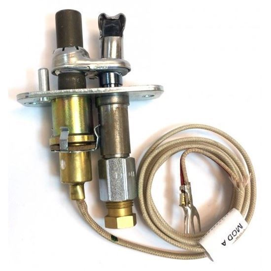 Buy RPI Part# P322399 at partsIPS